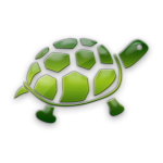 S&Y Green Turtle
